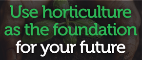 FREE YOUTH TRAINING - HORTICULTURE TE PUKE